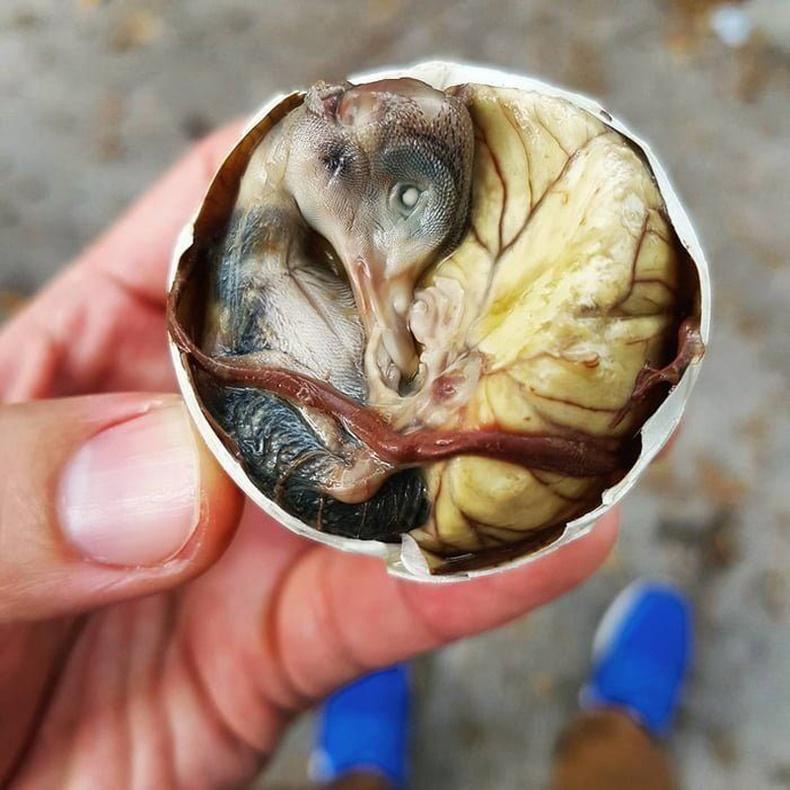 Balut — Филиппин