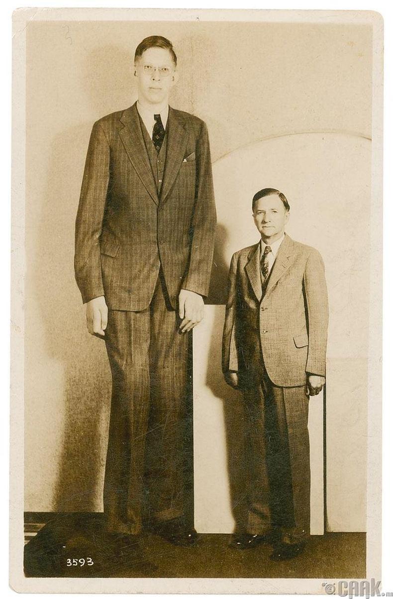 Хамгийн өндөр хүн