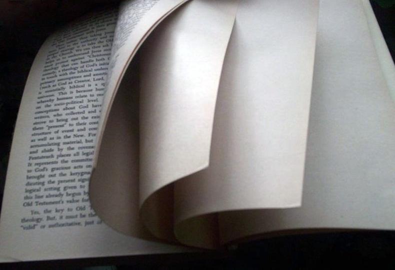Яагаад ном дотор хоосон хуудас үлдээдэг вэ?
