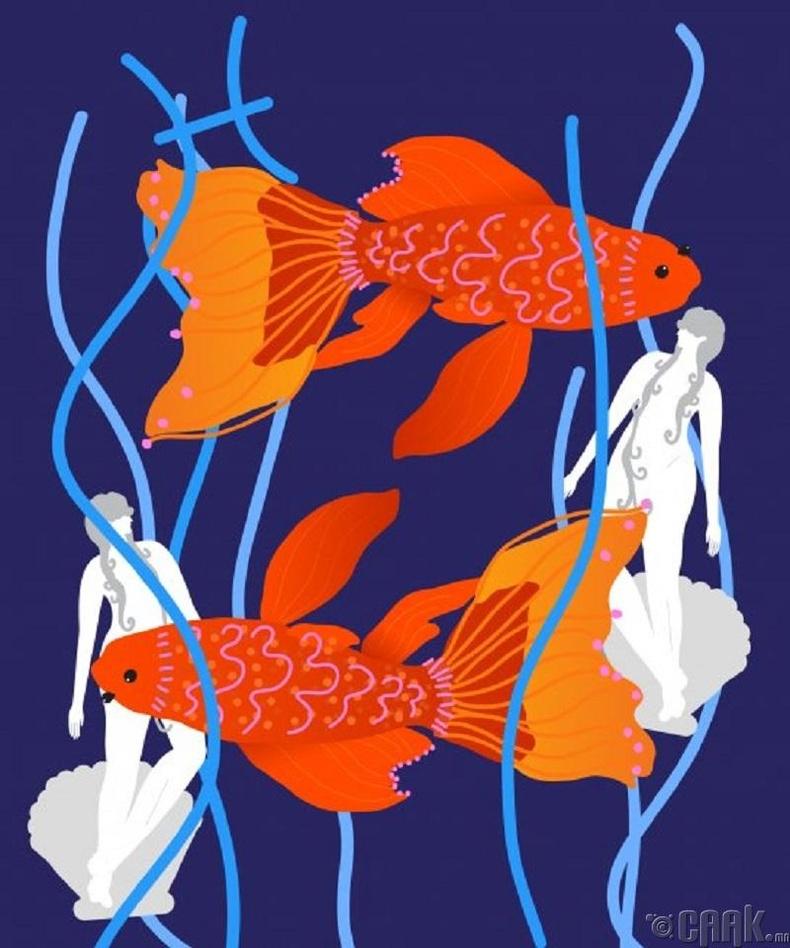 Загас -Хувь тавилангийнхаа эзэн нь бай