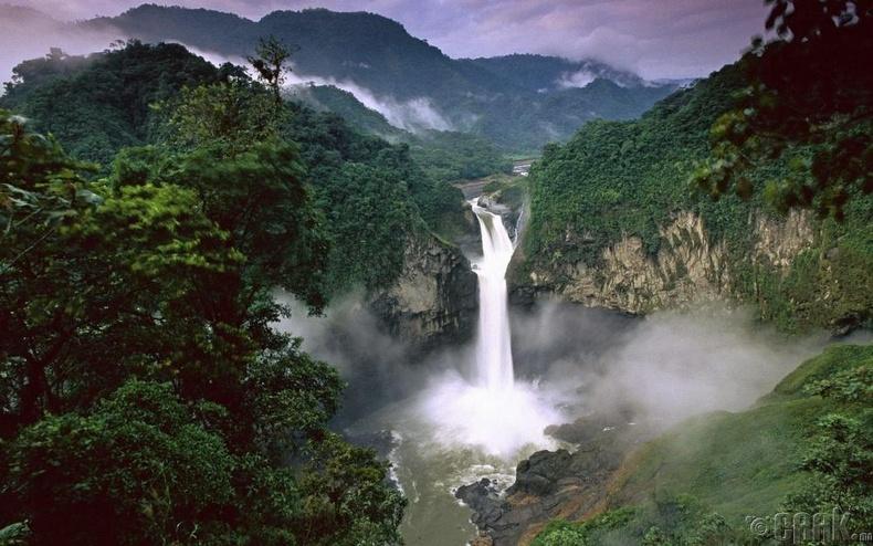 Амазоны ширэнгэн ой, Өмнөд Америк