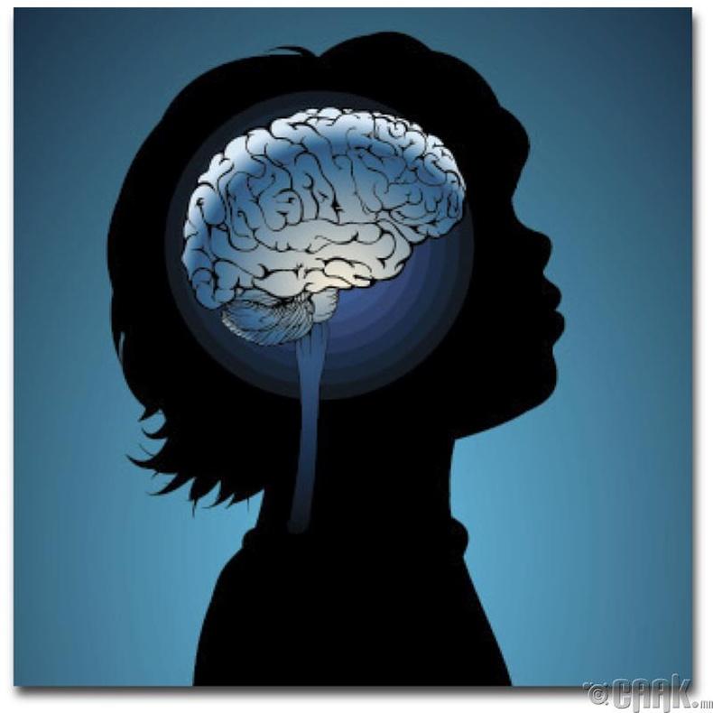 Тархины хөгжилд гойд сайн нөлөөтэй