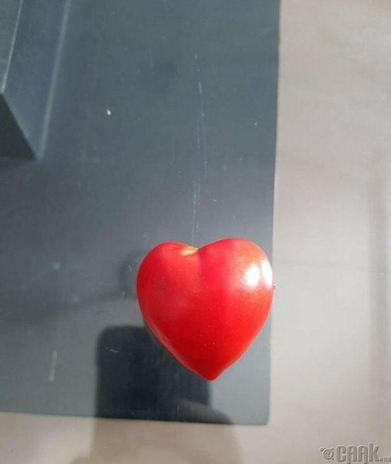 Зүрхэн хэлбэртэй улаан лооль