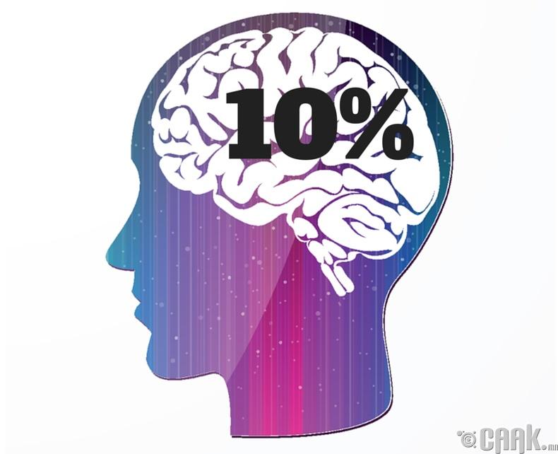 Хүн тархиныхаа 10 хувийг л ашигладаг