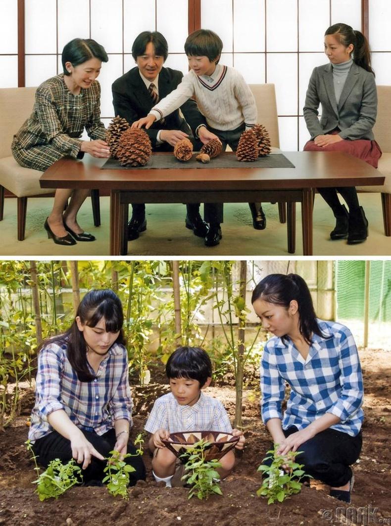Японы эзэн хааны гэр бүл