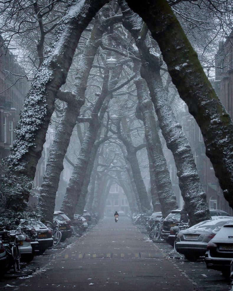 Амстердам хотын Ломан гудамж