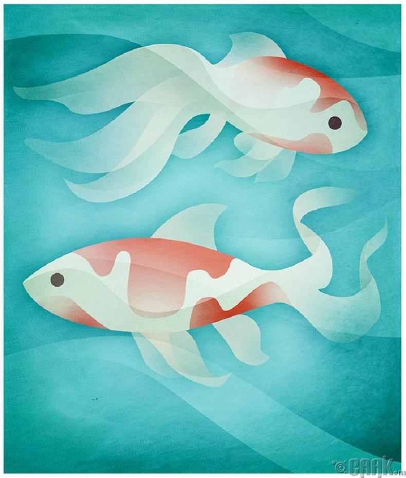 Загас - Ирээдүйдээ анхаарлаа хандуул