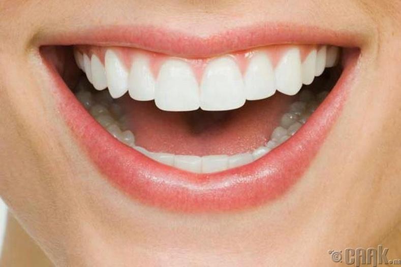 Яс болон шүдийг бэхжүүлэхэд ч бас нөлөөтэй