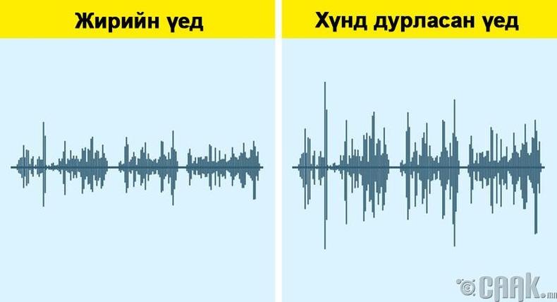 Хүний дуу хоолой өөрчлөгддөг