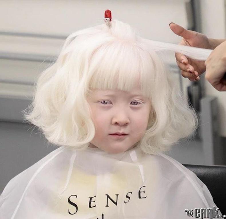 Ази тивд альбинос байна гэдэг ховор үзэгдэл
