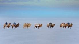 Монгол орны өвөл Швейцарь гэрэл зурагчны дуранд... (30 фото)