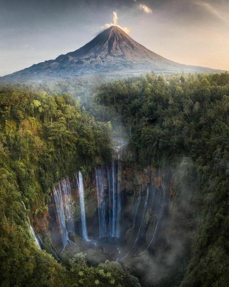 Зүүн Ява, Индонези