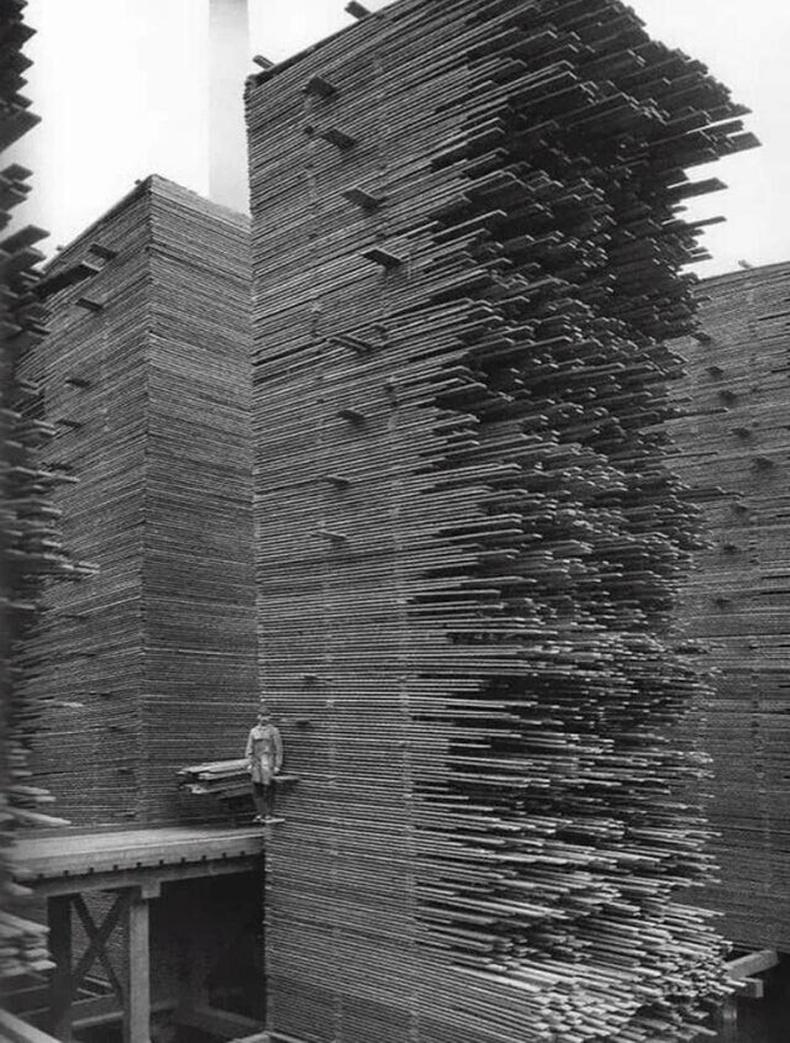 Хураалгатай банзнууд - 1919, Сиэтл хот