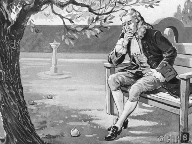 Бид бодохдоо: Толгой дээр нь унасан алимны ачаар Ньютон Таталцлын хуулийг олсон