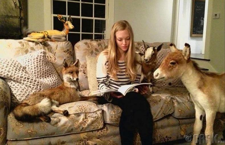 Аманда Сейфрид амьтны чихмэлд дуртай