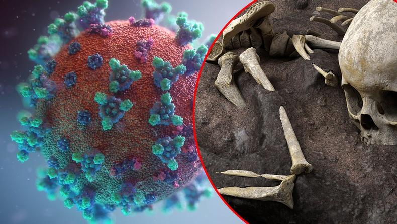 20 мянган жилийн өмнө Зүүн Ази коронавирусын тахалд нэрвэгдэж байсныг тогтоожээ