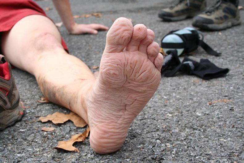 Нуувчны хөл