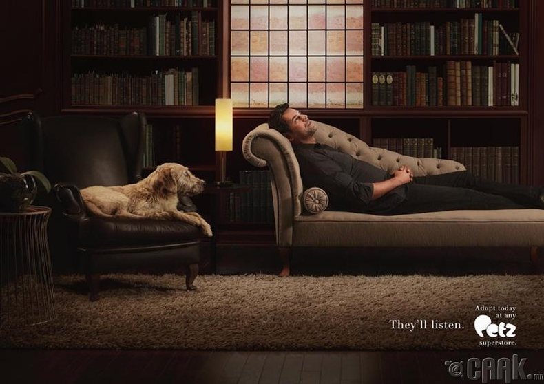 """""""Гэрийн тэжээвэр амьтдын сүлжээ дэлгүүрүүдийн сурталчилгаа"""""""