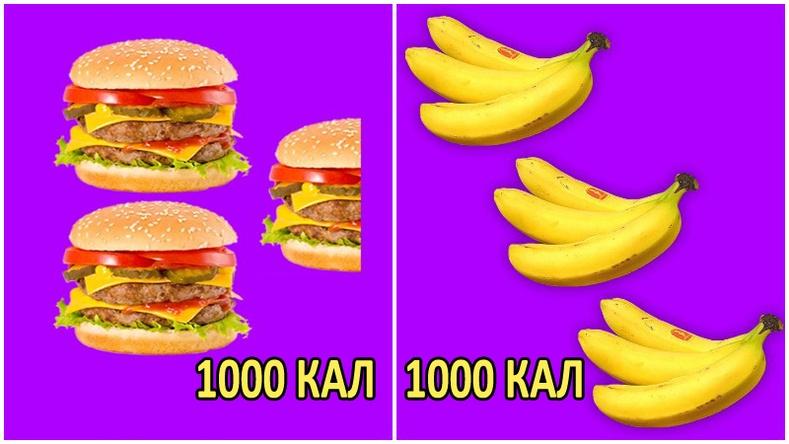 Төрөл бүрийн хүнснээс хэр хэмжээтэйг идэхэд 1000 калори болох вэ?