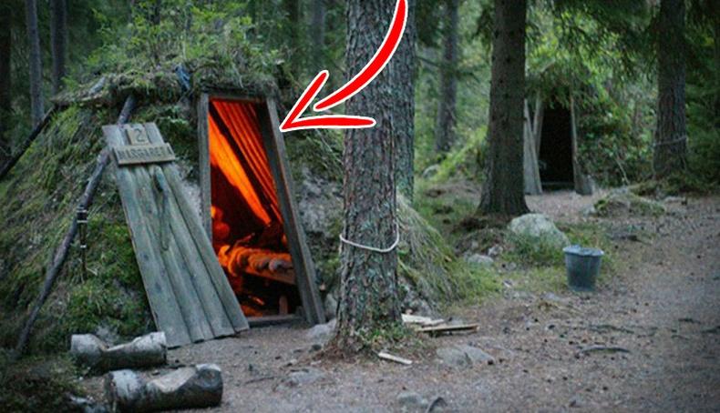 """Шведэд байдаг """"зэрлэг байгалийн"""" зочид буудал"""