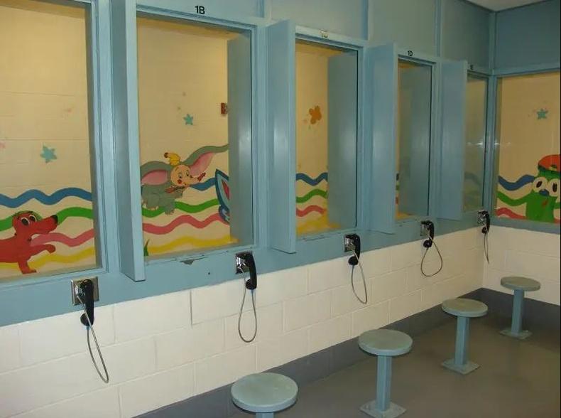 Жоржиа дахь хүүхдийн хорих анги, АНУ