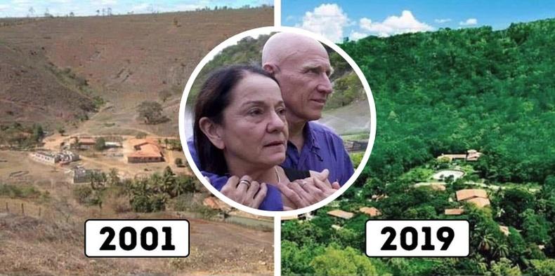 20 жилийн хугацаанд бүхэл бүтэн ой тарьж ургуулсан Бразил хосын түүх