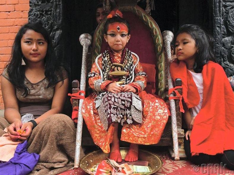 Нэвари ястны хүмүүс нь 3-5 настай охидыг амьд бурхан болгон шүтэн дээдэлдэг аж. Харин охид өсвөр насанд хүрмэгцээ жирийн амьдралтай болцгоодог.