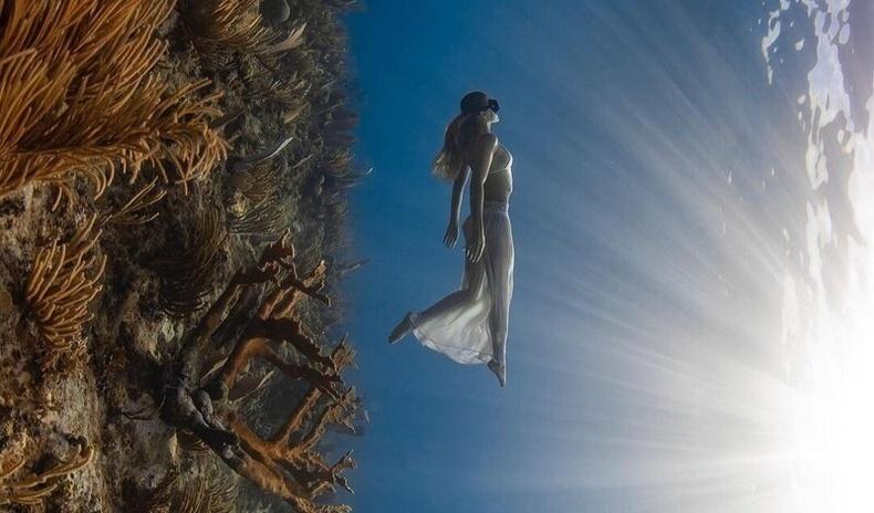 Усан доорх гэрэл зургийн мастер Жэйсон Вашингтоны нүд баясгам сайхан бүтээлүүд
