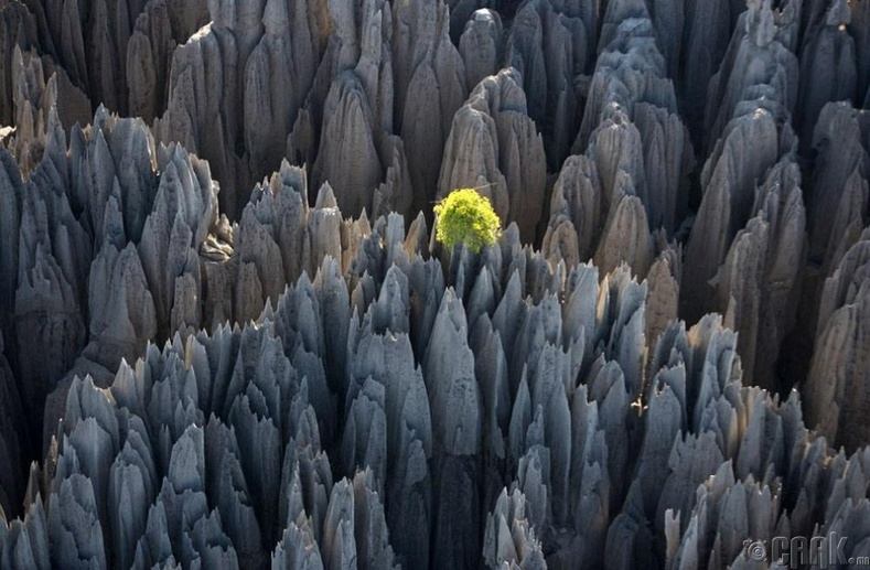 Синги-де-Бемараха, Мадагаскар
