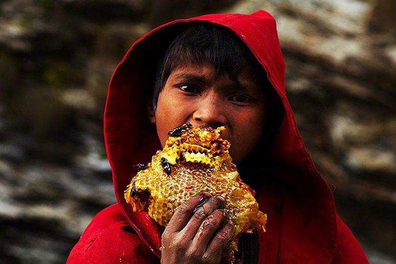 """Балбачууд амтат """"алт""""-аа хэрхэн цуглуулдаг вэ?"""