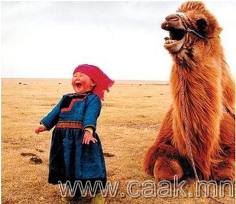 Монгол элдэв зураг (98 фото) №10