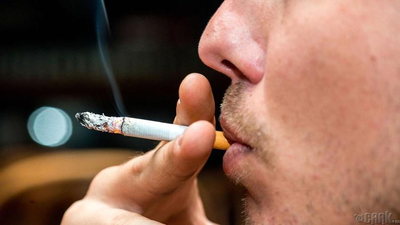 Тамхины хор элгэнд ч бас очдог