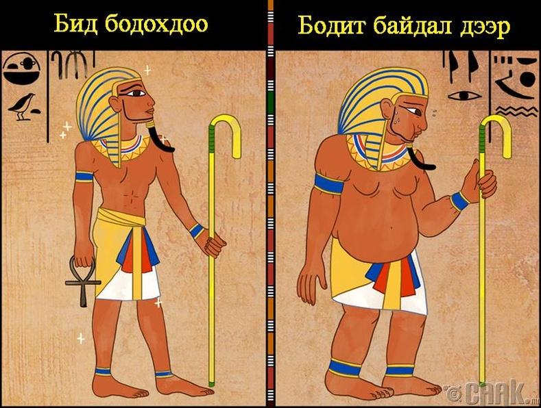 Фараонууд их таргалдаг байжээ