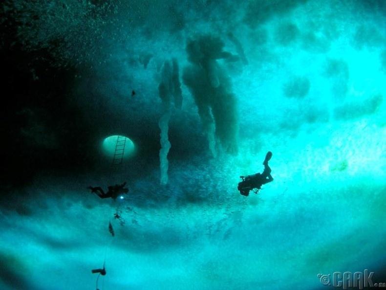 Кейп Эванс дахь далайн мөсөн доогуур явж буй шумбагчид