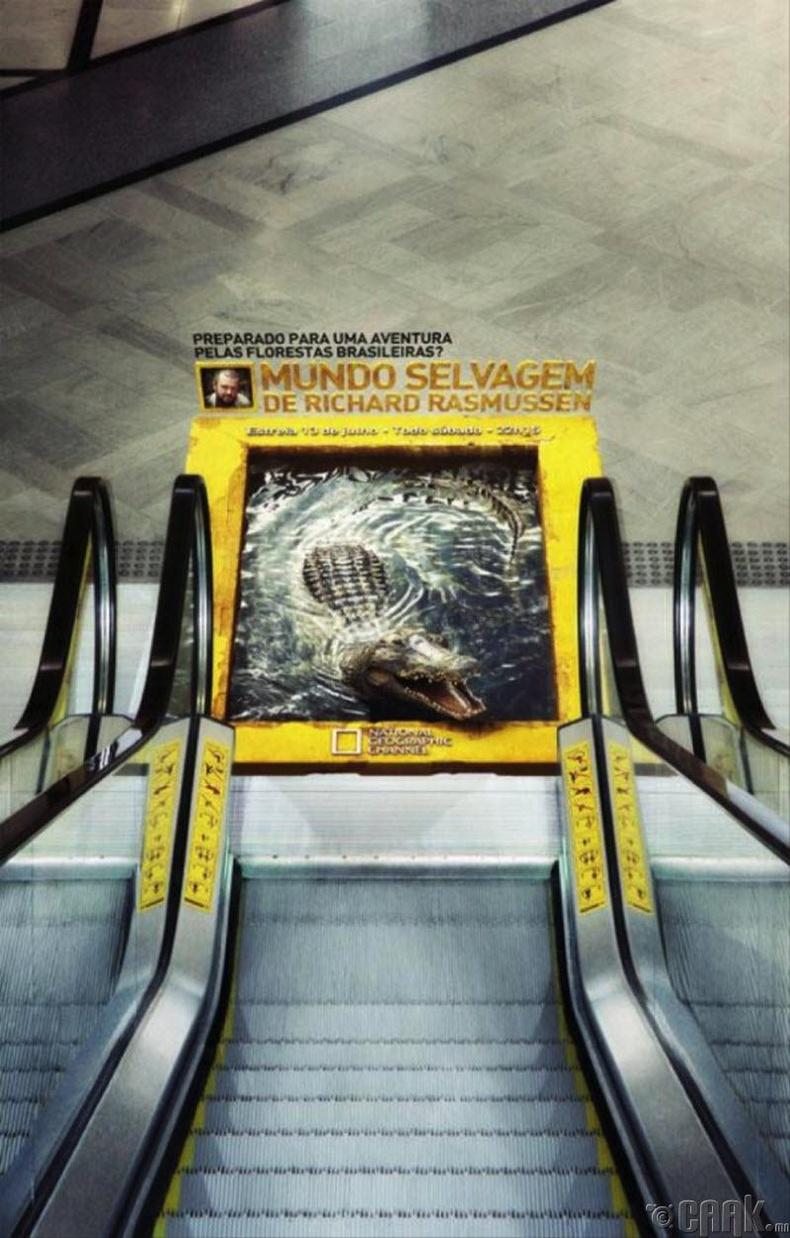 National Geographic-ийн энэхүү баримтат нэвтрүүлгийг олон хүн үзэх нь гарцаагүй ээ.