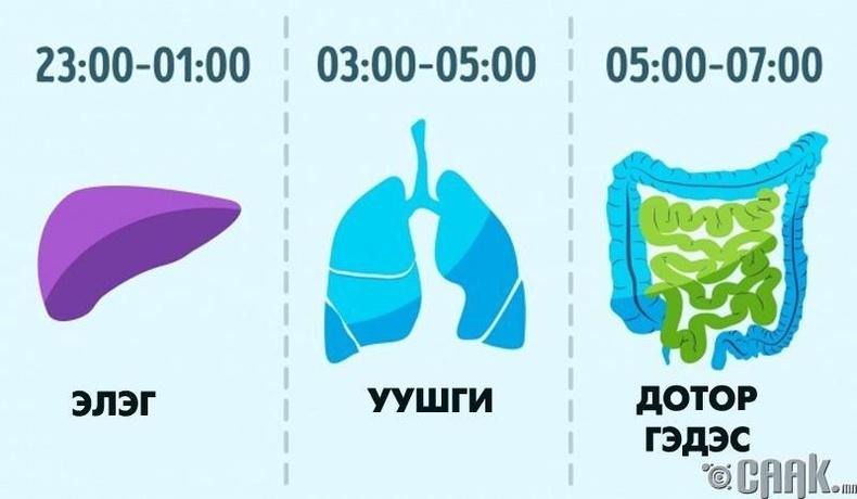 Унтахад хамгийн тохиромжтой цаг бол 22:00-06:00