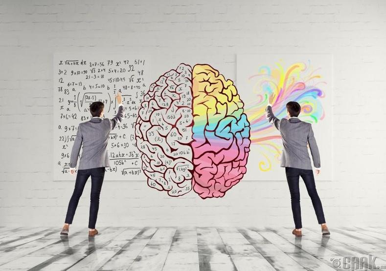 Зүүн болон баруун тархи