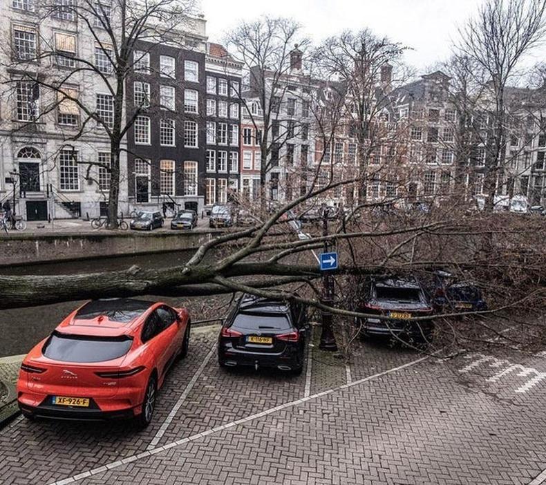 Амстердам хотын догшин шуурга