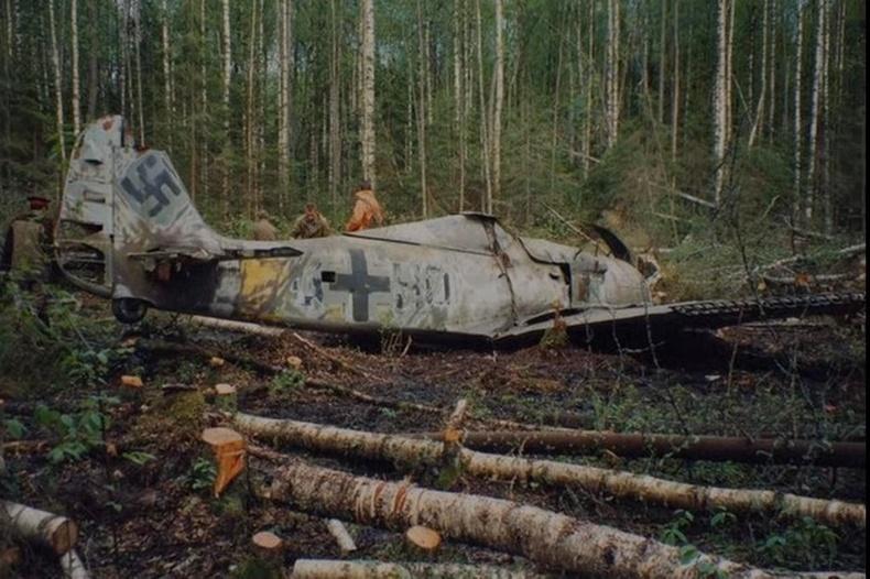 Ойд унасан нацист Германы онгоц 1989 онд олджээ