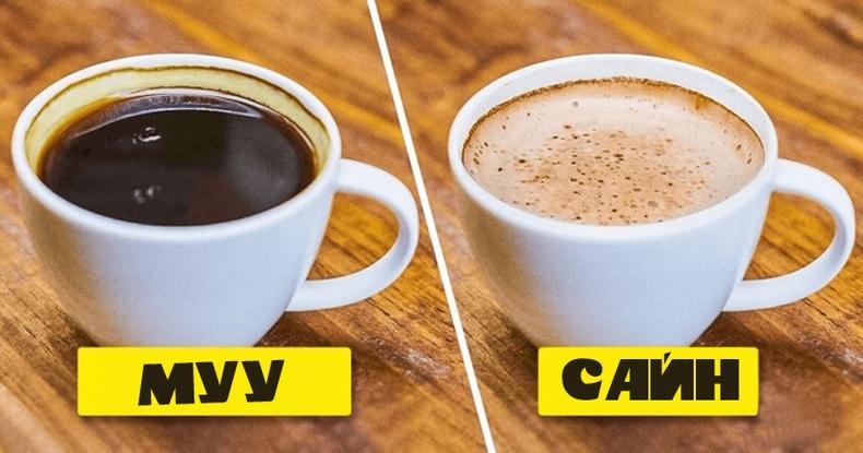 Өдөр бүр нэг аяга кофе уувал бидний биед юу болох вэ?