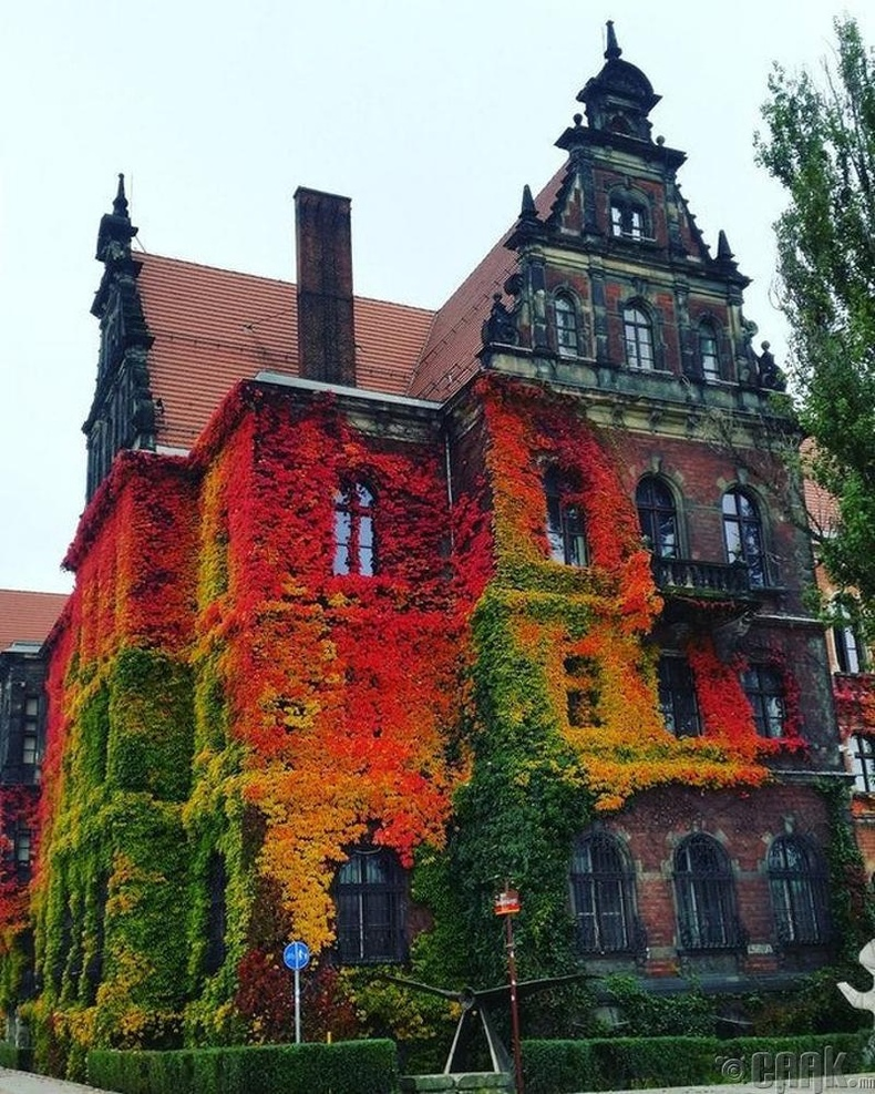 Вроцлав, Польш