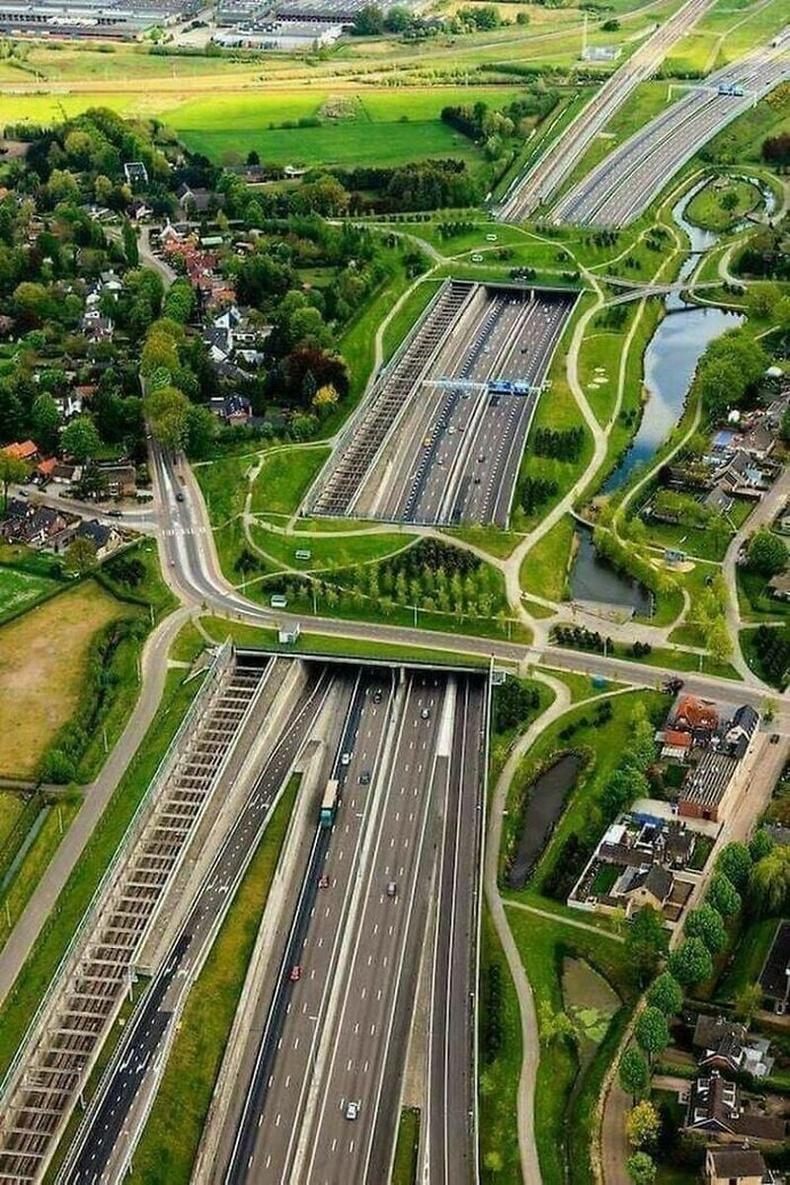 Амьтан, явган хүн, хурдны зам гээд бүгдийг тооцоолсон гүүр, Нидерланд