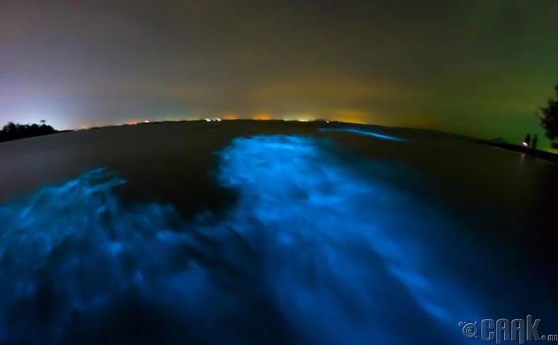 Гэрэлтдэг далайн эрэг
