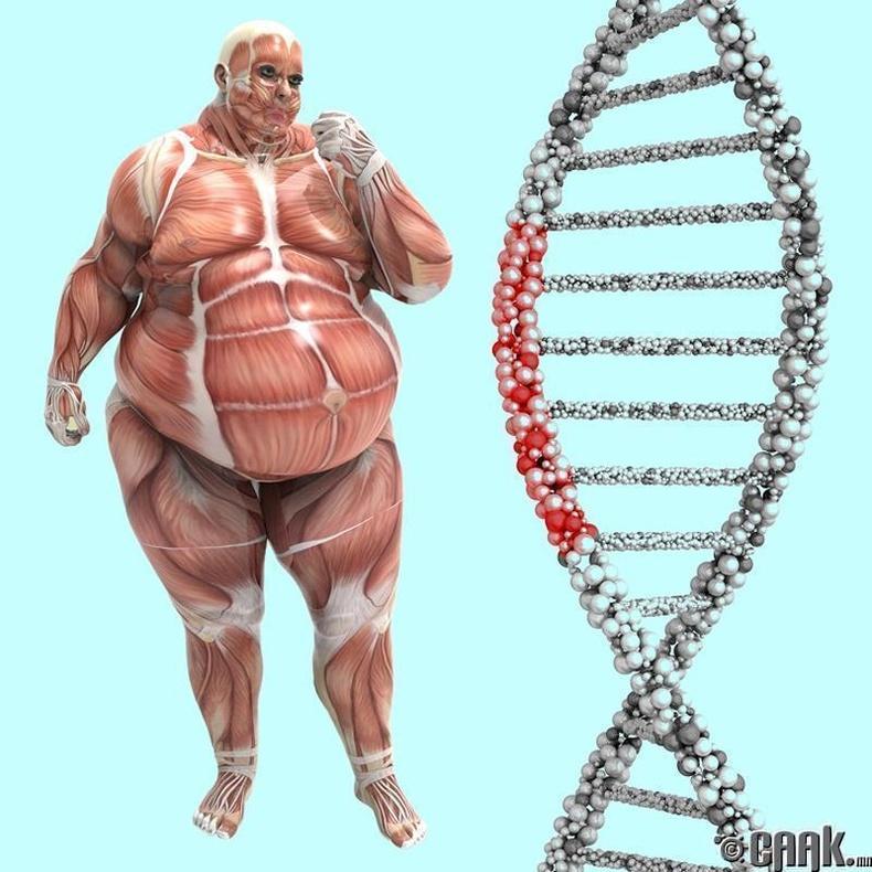 Таны ген амттан идэх дур хүсэлд тань нөлөөлнө