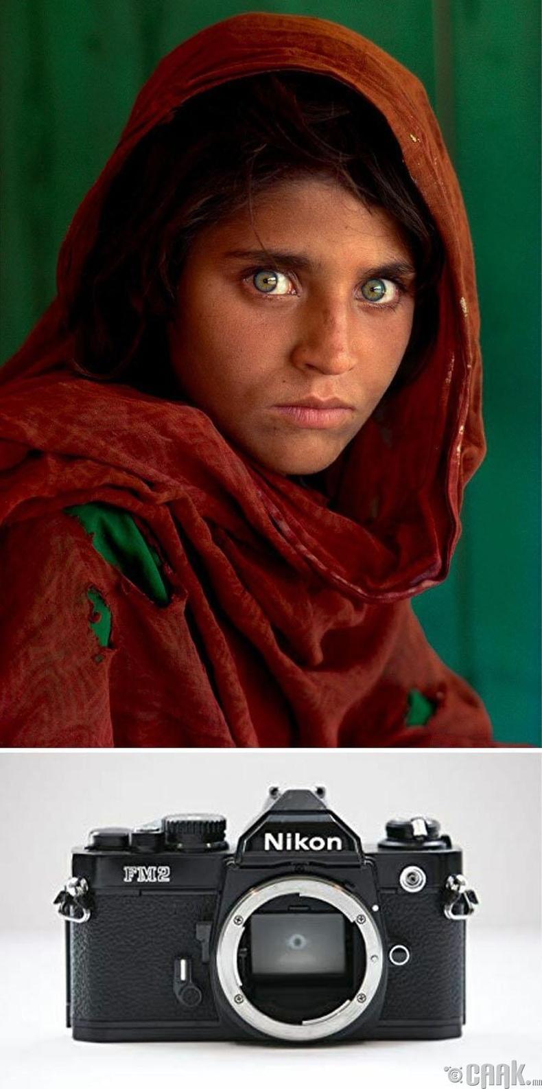 """""""Афган охин"""", Стив МакКарри, 1984 он. """"Nikon Fm2"""" камер"""