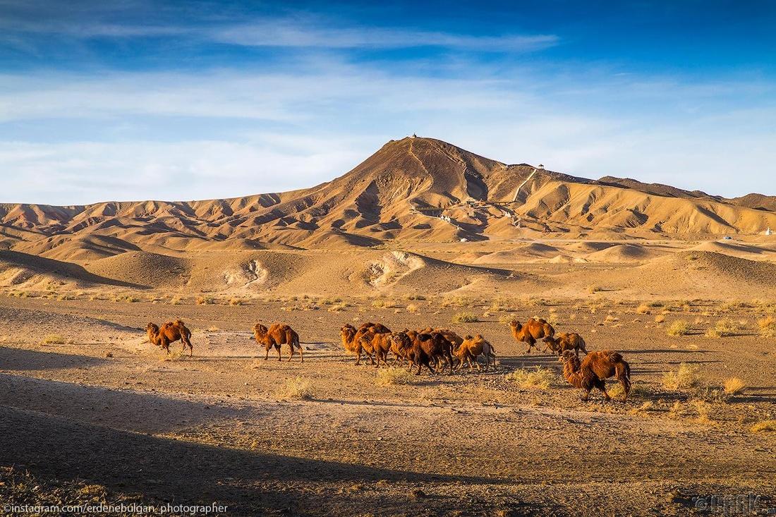 Хүслийн уул буюу Хан Баянзүрх хайрхан. Дорноговь аймаг