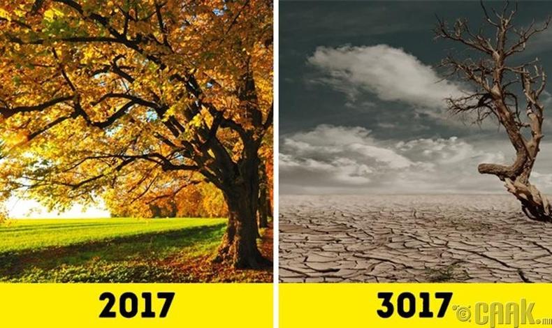 Дэлхий үржил шимгүй болно