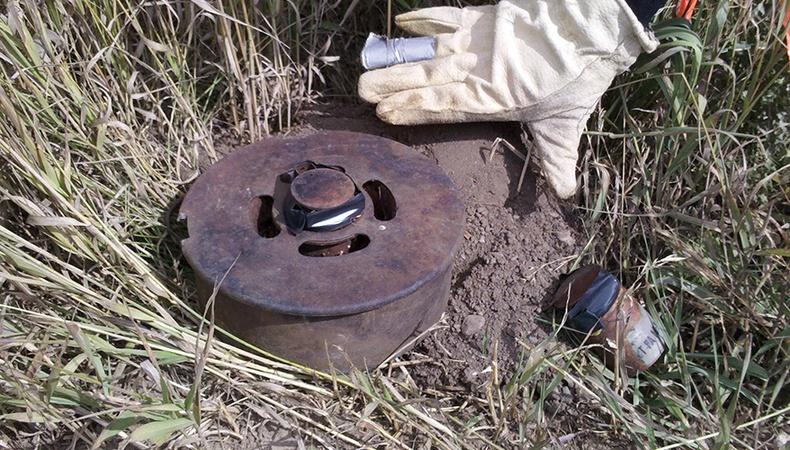 Газрын мина
