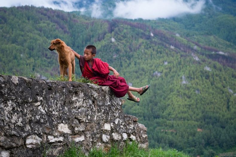 Ан амьтан, зэрлэг байгалийг хайрлах үзэл