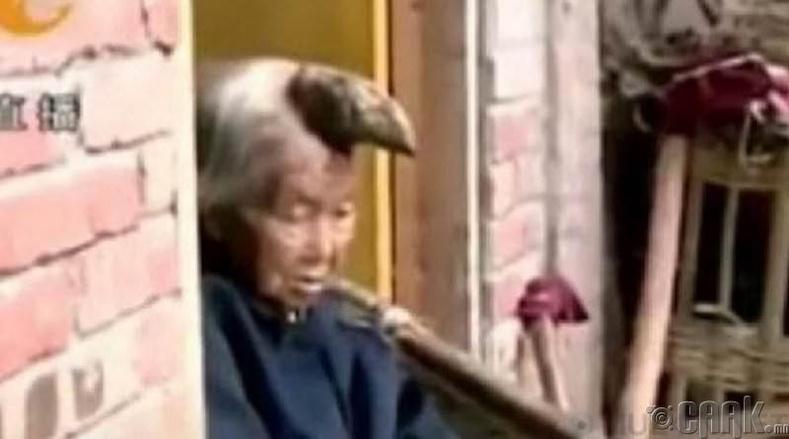 Толгой дээрээ эвэртэй эмээ